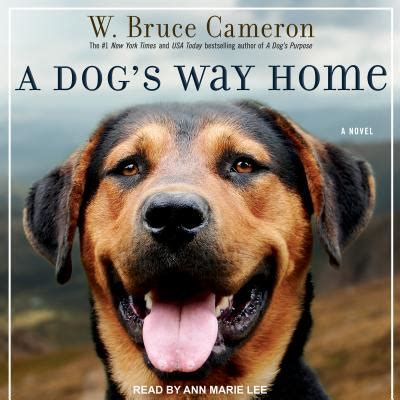 508763 a dog s way home a dog s way home mp3 cd tattered cover book store