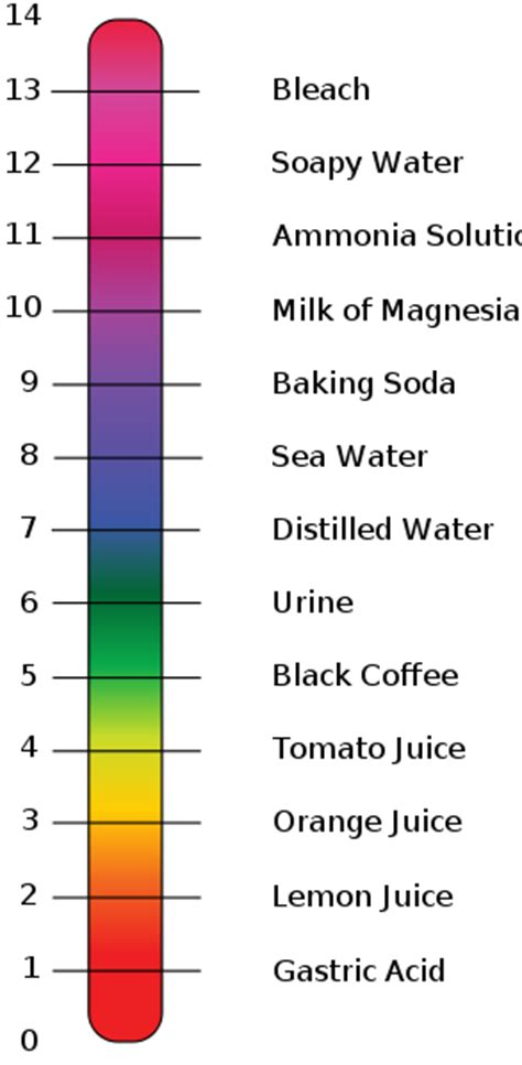 acid base ph scale what does v mean in hair color blackhairstylecuts com