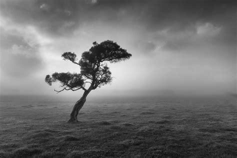 black white fine art photography rob dose landscape
