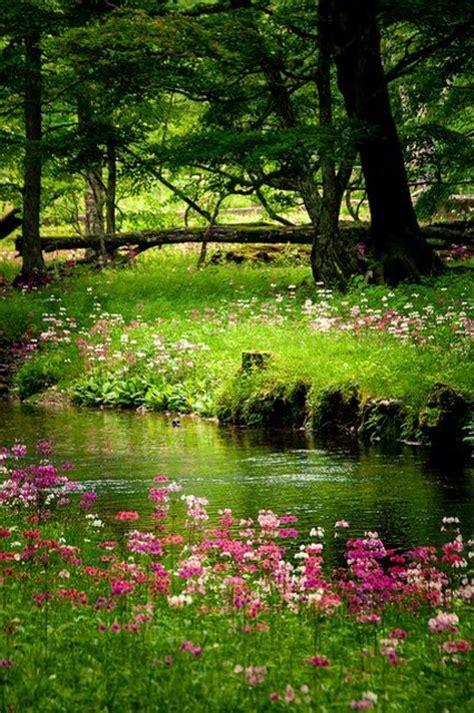 imagenes bonitas de paisajes para celular im 225 genes para fondos de pantalla de paisajes de primavera