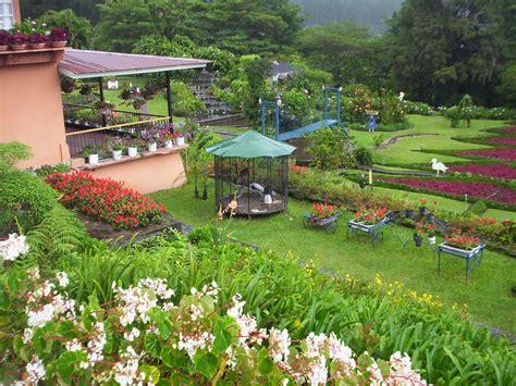 imagenes de jardines escolares arte y jardiner 205 a como dise 241 ar un jardin