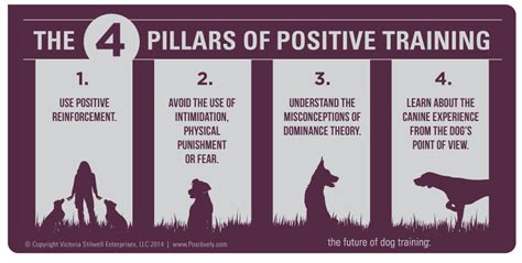 positive reinforcement what is positive stilwell positively