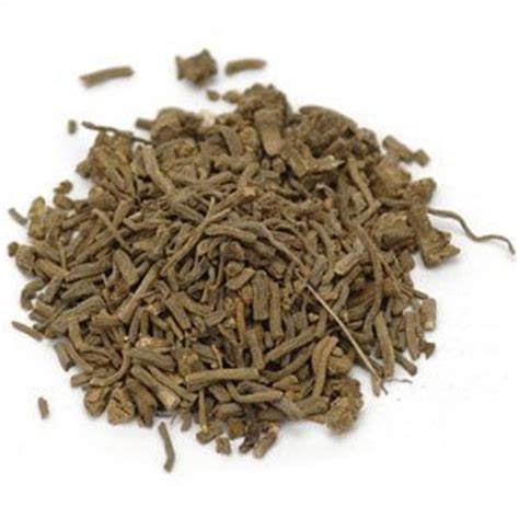 valerian root for dogs can i give my valerian root can i give my