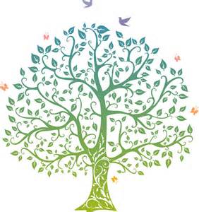 tree of life the tree of life wicca daily