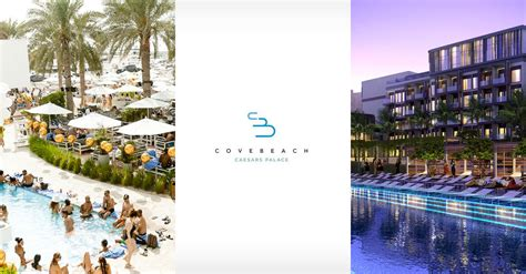 cove beach club  relocating  caesars palace hotel whats  dubai