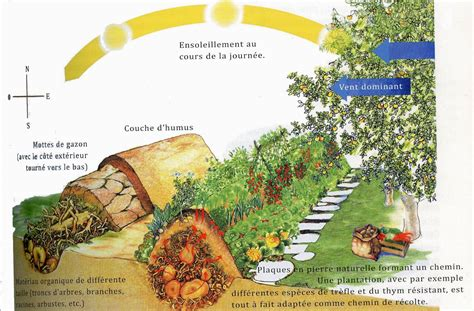 permaculture r 233 aliser une butte auto fertile en 4 233