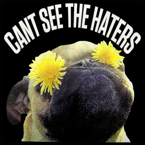 pug haters can t see the haters pug t shirt
