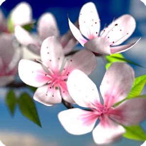 google images flower spring flowers 3d parallax hd android apps on google play