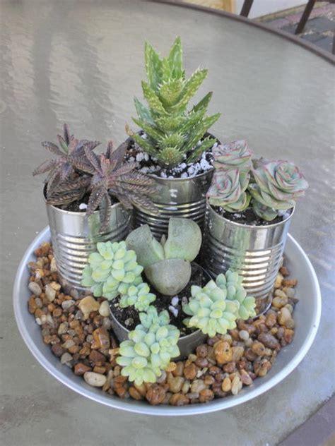 easy succulent garden favecrafts
