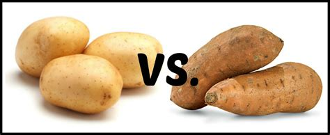 potato couching white foods good or bad coach dan cumberworth