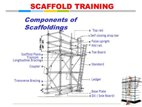 scaffold parts diagram image gallery scaffold components