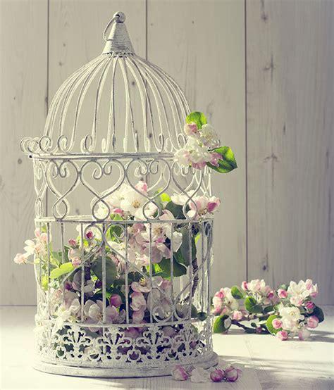 ideas para decorar con jaulas ideas para conseguir una decoraci 243 n vintage con jaulas