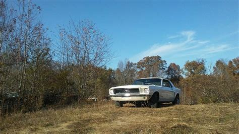 how did mustang get its name jim s auto truck inc thonotosassa fl where did the
