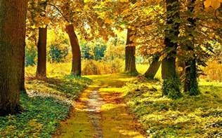 fall landscape landscape autumn wallpapers pictures