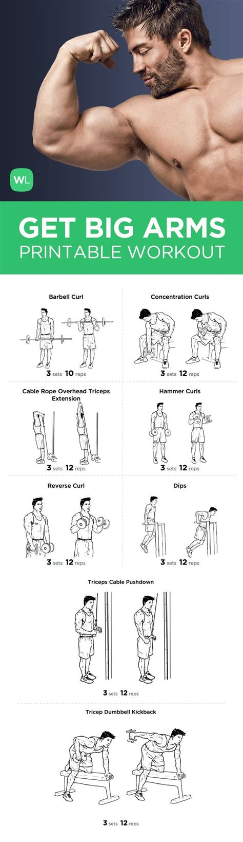 printable workout plan build muscle big arm bicep and tricep workout routine tricep workout