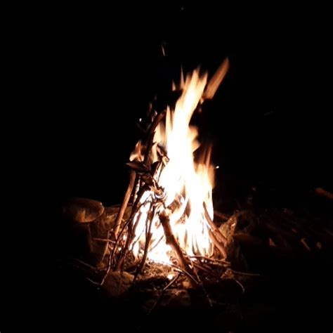 fireplace gifs cfire gifs find on giphy