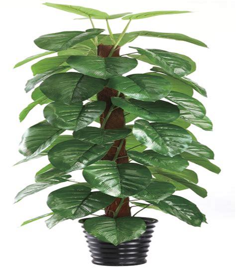 Artificial Plant Decoration Home Scindapsus Aureus Epipremnum Aureum Epipremnum Pinnatum