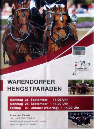 Aufkleber Westfalenpferde by Pferdefotografie Gitta Gesing