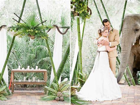 safari wedding theme