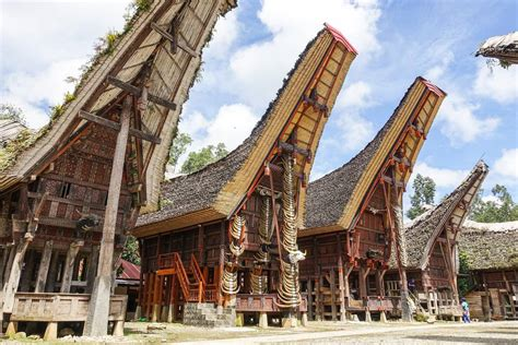 Toraja Maxy toraja indonesia what to before you go