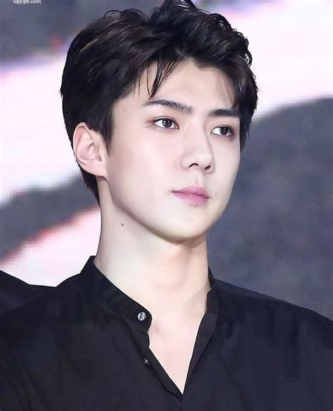 biography of exo sehun 5828 best ma k life images on pinterest exo videos and