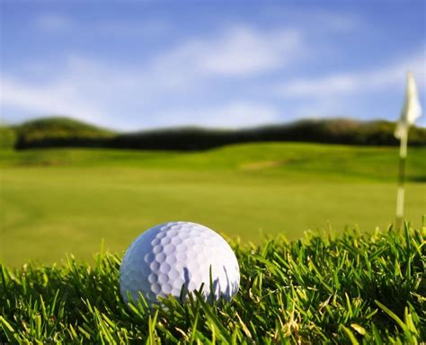 golf images high resolution elephant photos wallpapers and