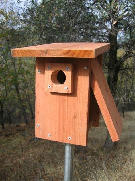 nest box birdhouse plans bird house plans  bird