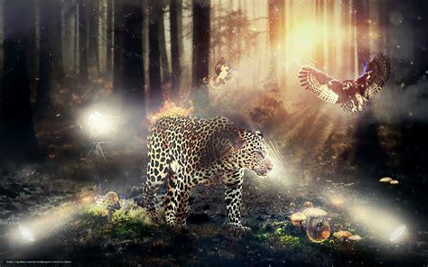 download wallpaper leopard fauna and flora free desktop wallpaper in the resolution 1920x1200