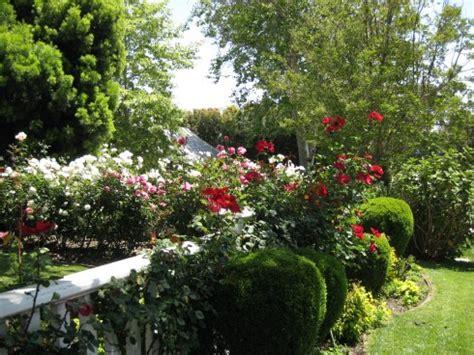 design flower beds free flower bed designs casual cottage