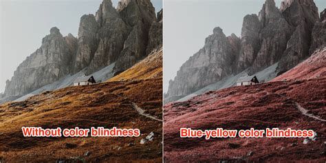 what does the color look like photos what the world looks like when you re color blind