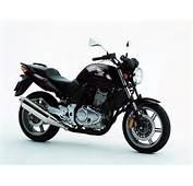 Honda Motos 2014 Esportivas 250cc Hornet