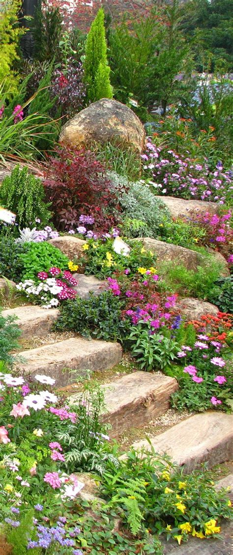 rock garden best 20 rock garden borders ideas on rock