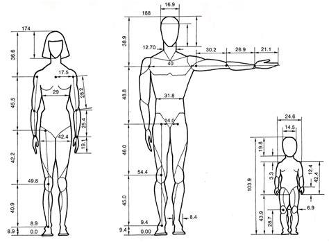 design by humans size guide diagram horse proportions balance diagram elsavadorla