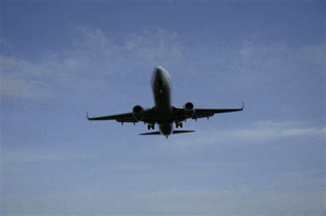 imagenes de uvas gif imagenes y gifs de aviones imagui