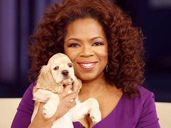 oprah s dogs why oprah winfrey is so successful
