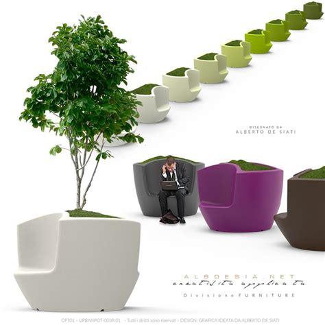 alberi in vaso da esterno 17 migliori idee su alberi in vaso su vasi da