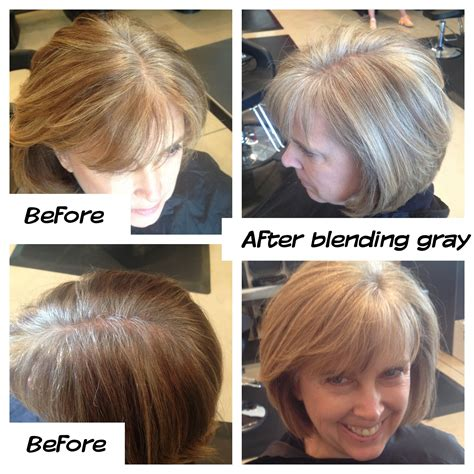 frosting dark hair to grown out gray medium dark brown hair with blending gray highlights photo