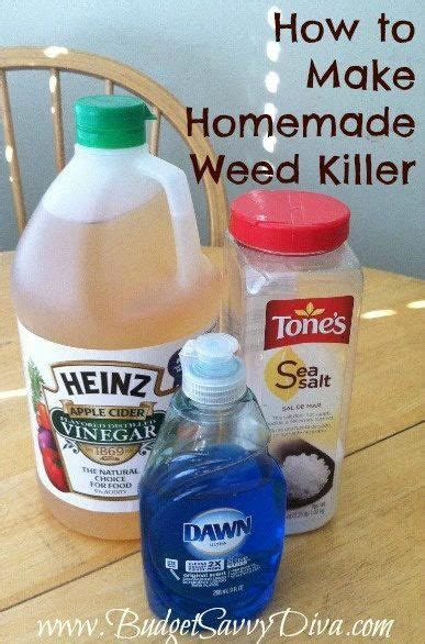 25 best ideas about vinegar weed killers on pinterest weeds vinegar homemade weed spray and