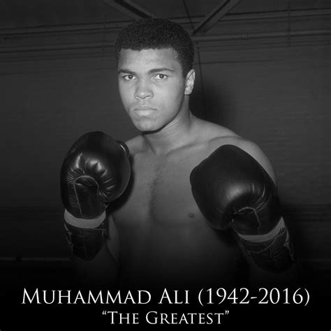 biography channel muhammad ali muhammad ali height weight age affairs biography