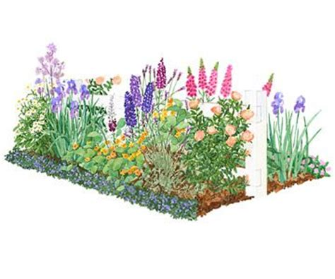 cottage garden plans garden plans for cottage style gardens delphiniums and