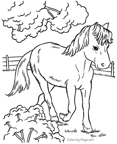 Horse Coloring Pages Horse In Pen Coloring Page Net