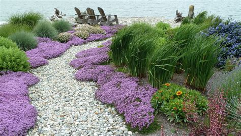 beach garden path seattle traditional landscape