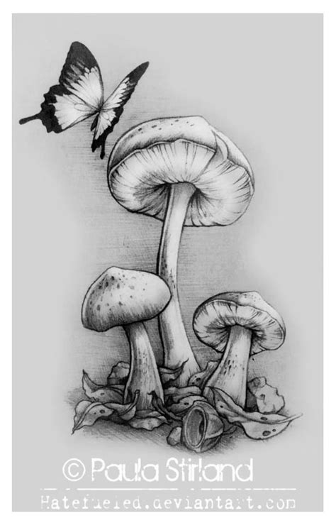 mushroom tattoo designs tattoos page 150