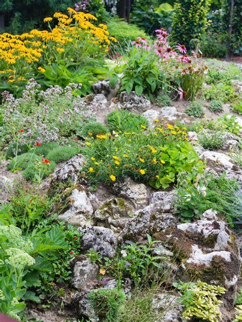 building a rock garden how to build and plant an alpine rock garden david domoney