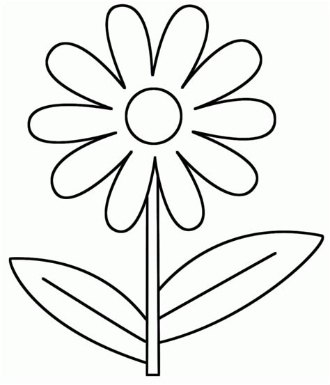 free coloring pages daisy flower daisy flower coloring pages coloring home