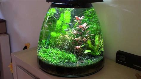 Design Aquarium Nano | update self made design nano aquarium youtube