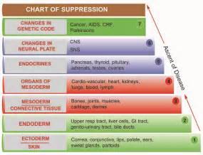 mindheal homeopathy november 2010
