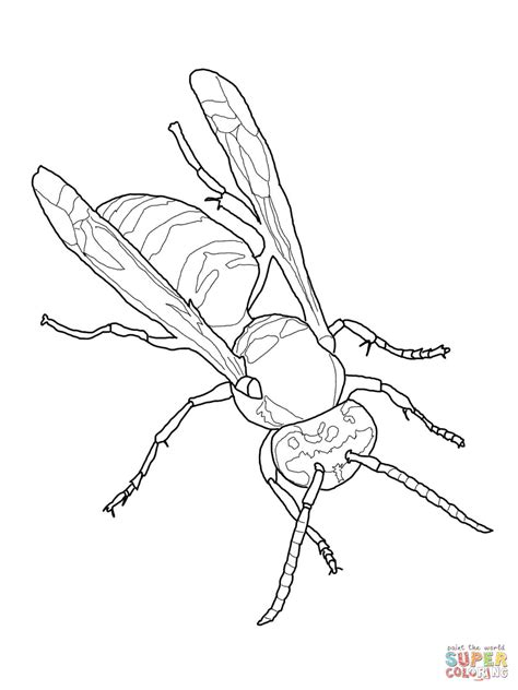 yellow jacket coloring sheet coloring pages