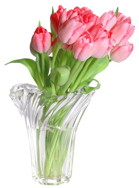 Flower Vase Png by Pink Tulips In Vase Png Clip Image Gallery