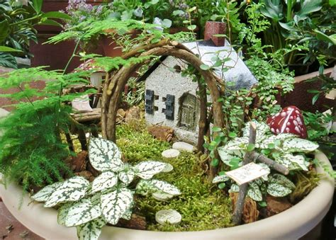 Wholesale Home Decor Canada by Fairy Gardens Anyone Gardening Forums